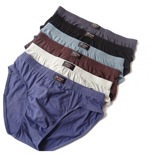 Men's Briefs 4pcs /Lot