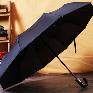 Classic English Style Men's Umbrella