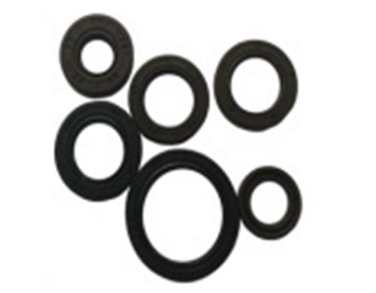 Engine Oil Seal Set for RAPTOR 200