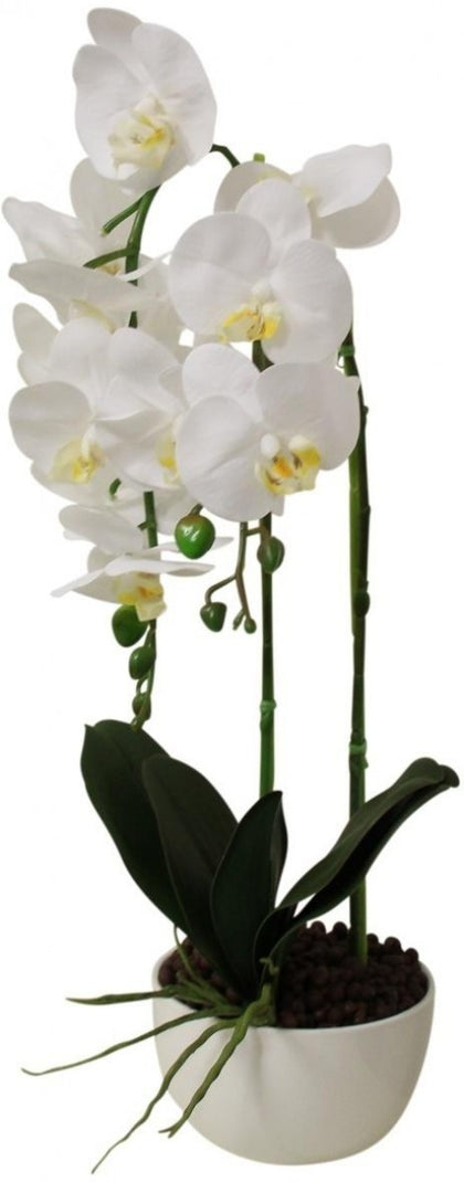 LaVida: Imitation Orchid Double Stem - White