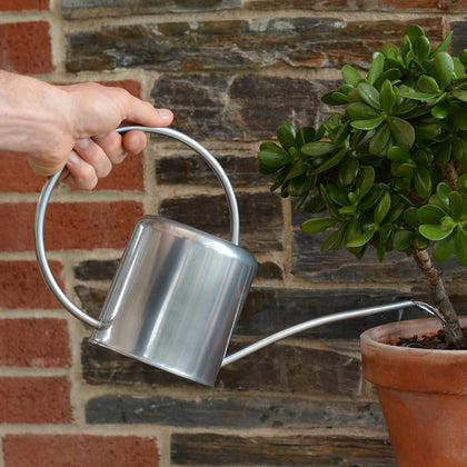 Silver Indoor Plant Watering Can