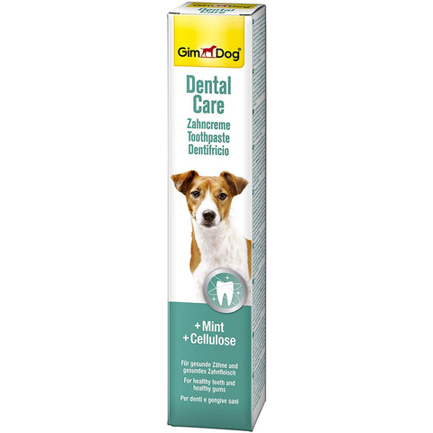Dental Care Toothpaste