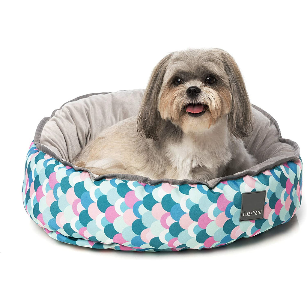 Splash Dog Bed, Multi-Color, Large