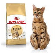Royal Canin - Adult Bengal
