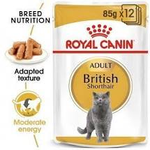 Royal Canin British Shorthair Wetfood