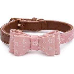 Pawsitiv Collar Daisy Medium