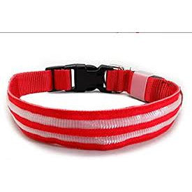 LED Collar Red Medium
