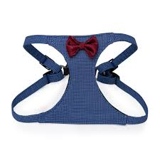 Pawstiv Harness Oscar Medium