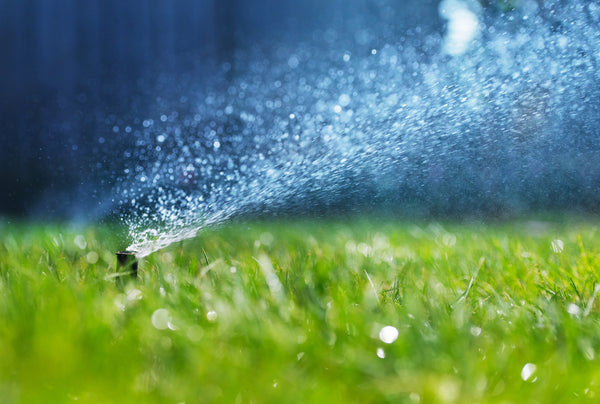 How to check your sprinkler run time and save water