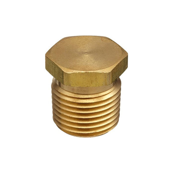 Brass Threaded Plug 1""