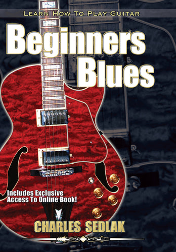 Blues Guitar Lessons DVD