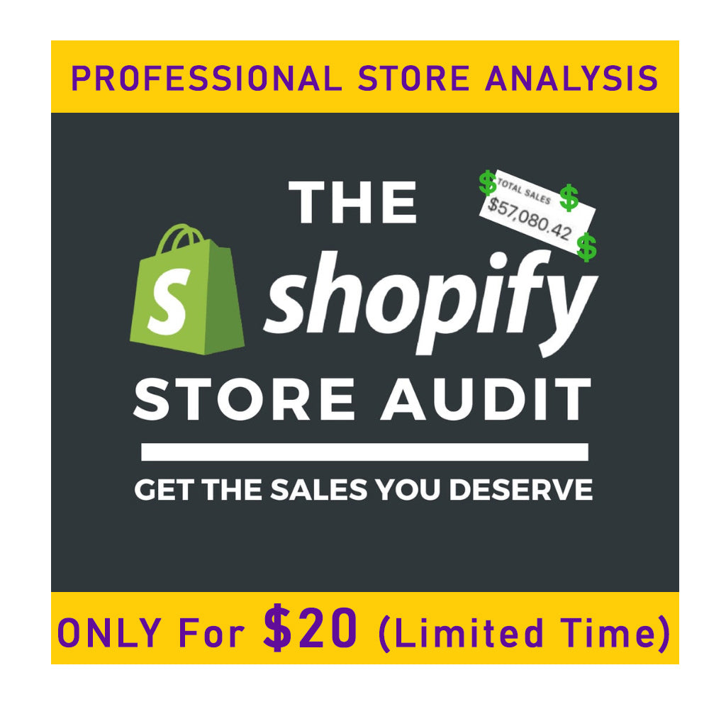 Shopify Store Audit