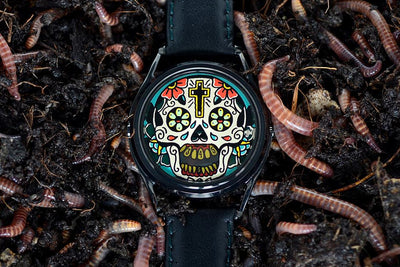 Skull Watches over Time - a Memento Mori Story