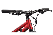 Argus Trail 24 Red