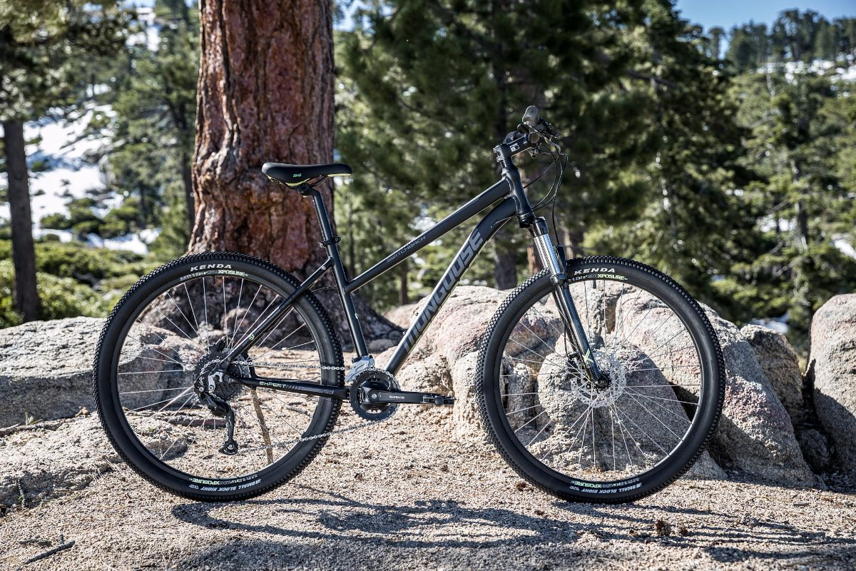 Women's Switchback Expert