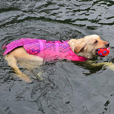 personal flotation device for pets