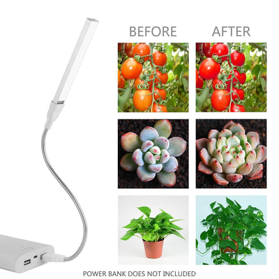 LED Plant Grow Light - 360 Degree Growing Lamp