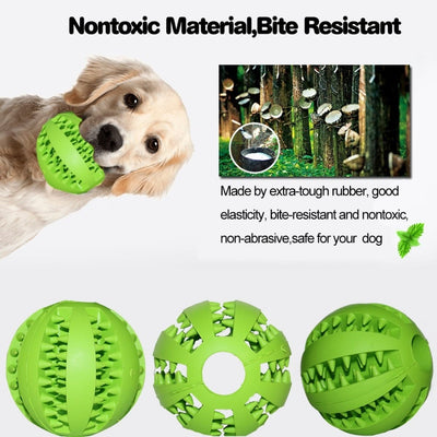 Buy 1 Get 1 Interactive Soft Rubber Ball for Dogs and Cats