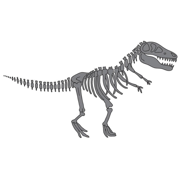 Large Skeleton T Rex