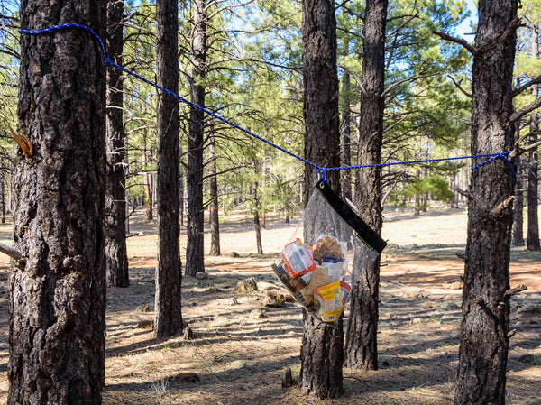 The RatSack Food and Gear Cache Bag hanging from a rope tied to two trees, providing superior backpacking food protection.