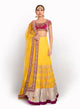 sonascouture - Velvet Fuschia And Yellow Soft Net Length BW061