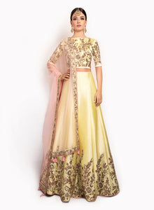 Fine Silk Lengha And High Neck Top BW086 - Sonas Haute Couture
