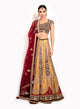 sonascouture - Antique Silk Lengha With A Velvet Top BW093