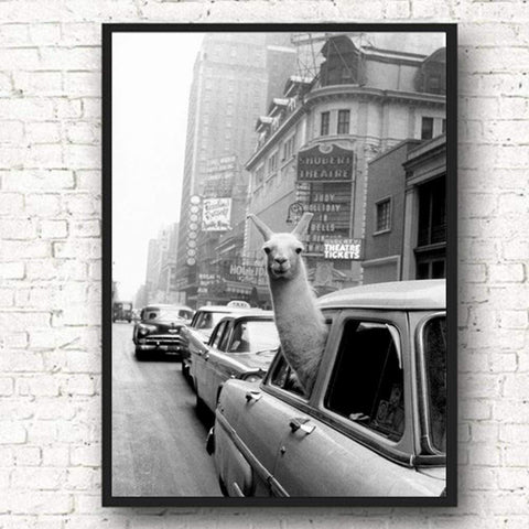 New York City Llama Poster - Zandes
