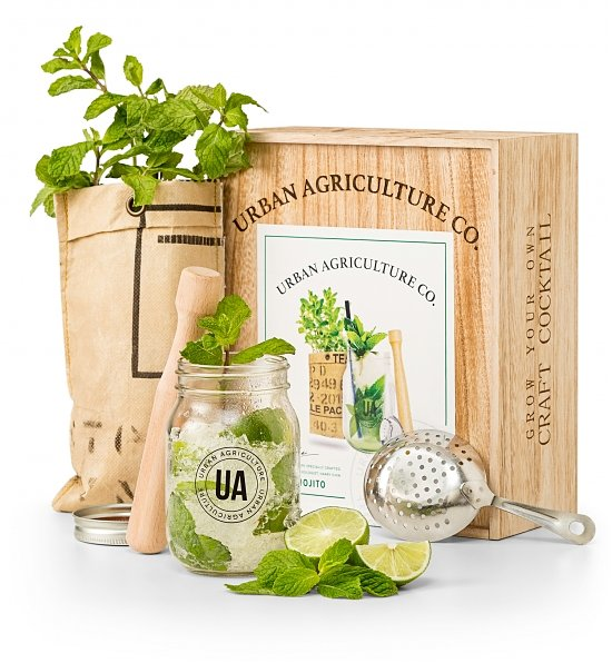 Grow Your Own Cocktail Kits