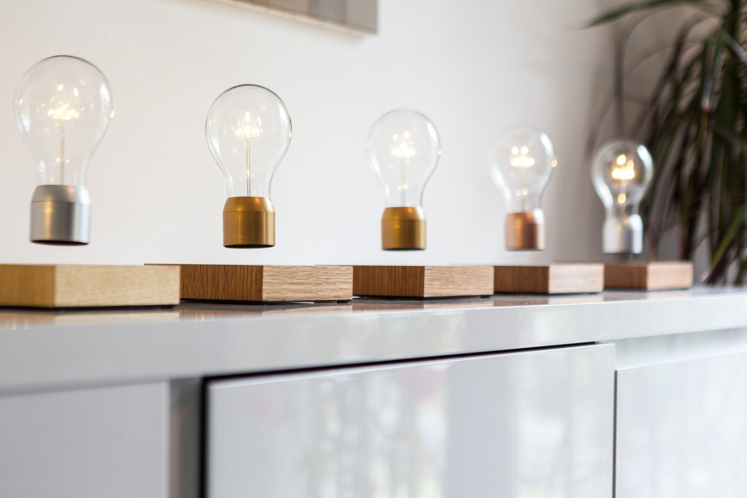 Flyte Floating Light Bulbs