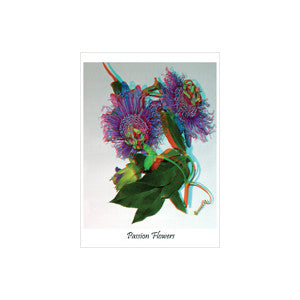 BARRY ROTHSTEIN GREETING CARD PASSION FLOWERS GIFTS CARDS AND STATIONARY 3D NOVELTY ourgallerystore museum store contemporary art high design functional art