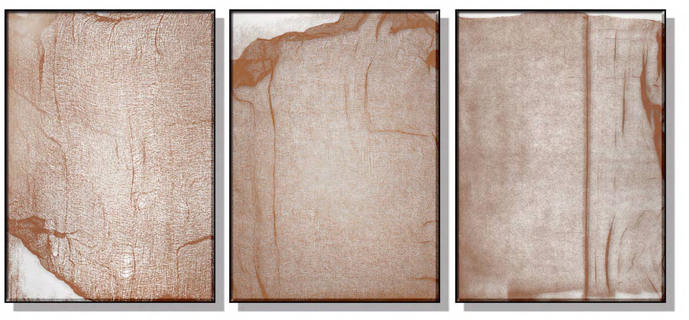 Rustic Abstract Silk Relief Print (Set of 3)