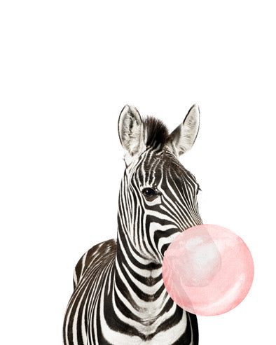 Zebra Bubblegum Crystal Ceramic Print