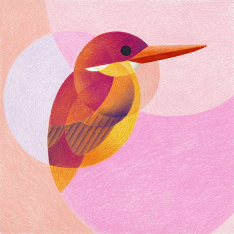 Geometric Bird Crystal Ceramic Print