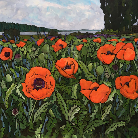 Poppies, Argyle Gardens by Kim Rosin