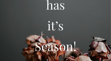 Everything has a Season!🤔