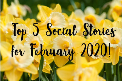Our Top 5 Social Stories for February 2020