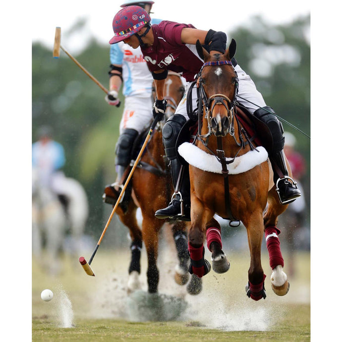 Nupafeed® Team Rider Tim Dutta and Dutta Corp Team Shine at International Polo Club