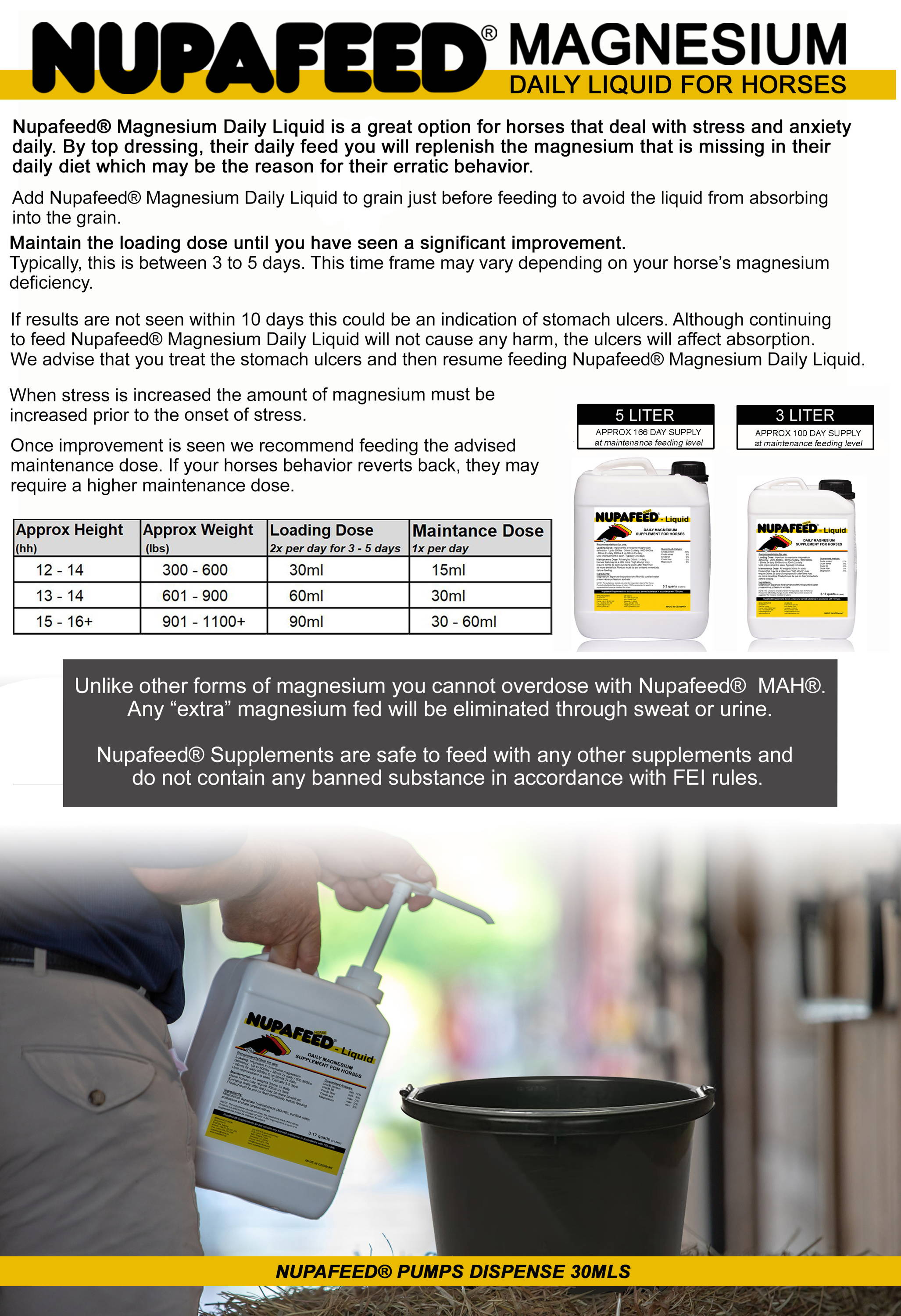 magnesium daily for horses feeding instructions