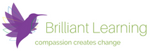 Institute for Brilliant Learning