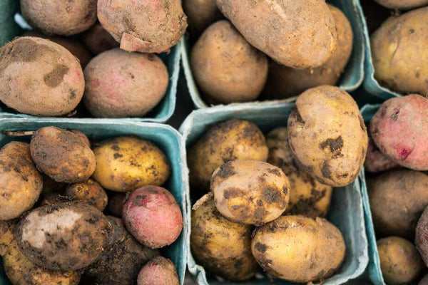 ic: potatoes in punnets