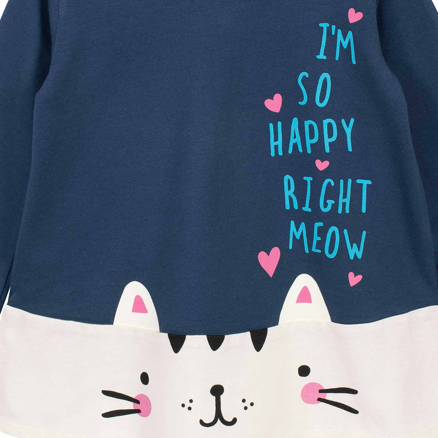 2-Piece Toddler Girls Kitty Tunic and Legging Set