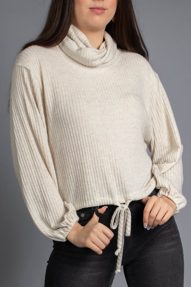 Brushed Ribbed Turtle Neck Top
