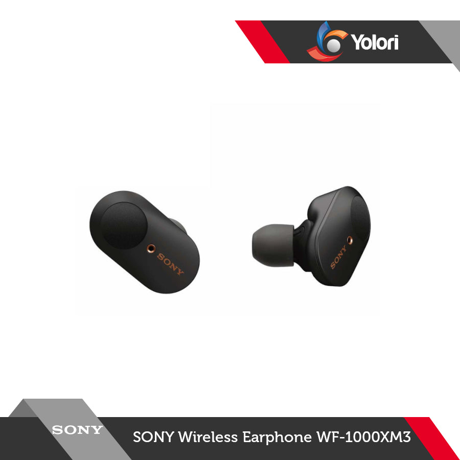 Sony Wireless Earphone WF-1000XM3