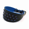 Wide black tapered leather collar with soft blue leather lining and blue crystals from Style Hound - front view