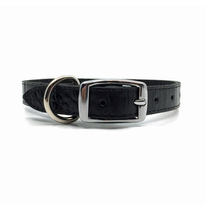 Mock crocodile leather collar in Black from Style Hound - back view