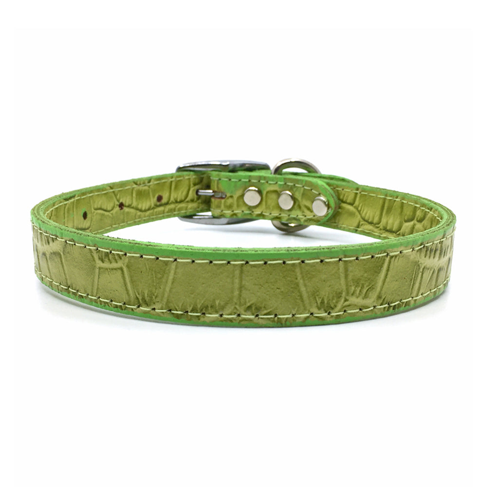 Mock crocodile leather collar in Green from Style Hound - front view
