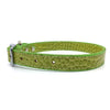 Mock crocodile leather collar in Green from Style Hound - Side view