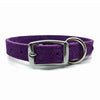 Embossed suede leather collar in a deep purple colour from Style Hound-back view