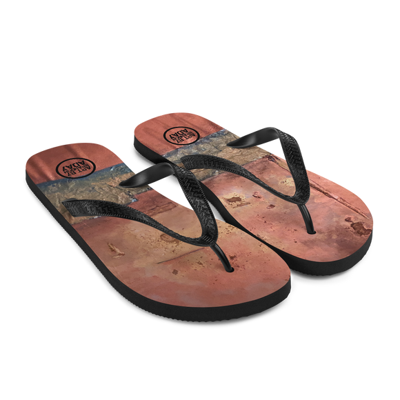 """Greed Decomposed on a Martian Desert"" Flip-Flops"